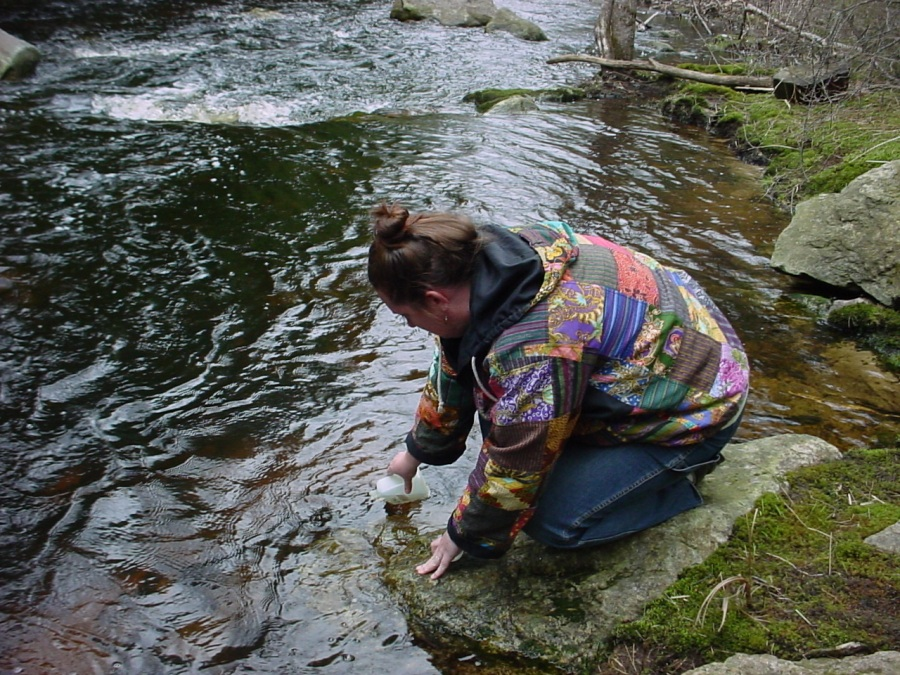 A volunteer samples for pH at Scott Brook in Royalston by Ivan Ussach