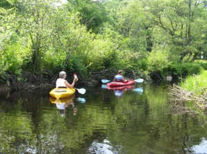 Paddling on Lawrence Brook, Royalston