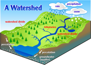 The Make Up of a Watershed