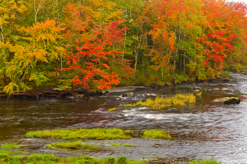 Autumn Foliage along Millers River, Royalston, MA